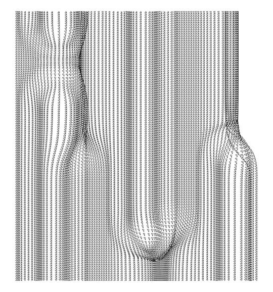 4 F3_geom barensfeld
