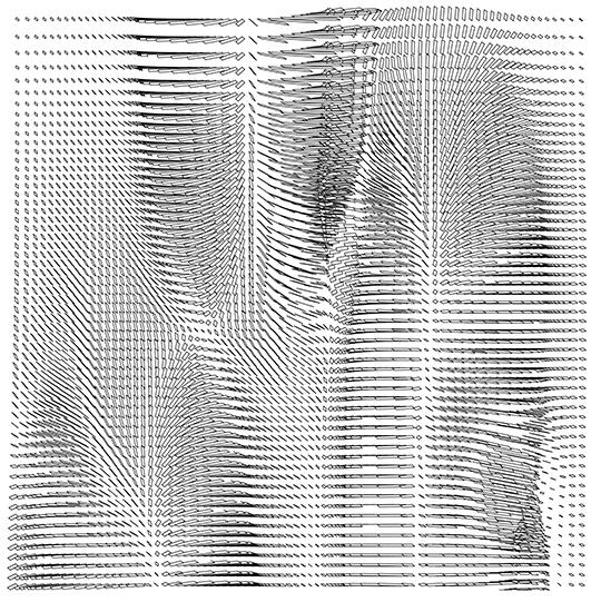 8 F4_geom barensfeld