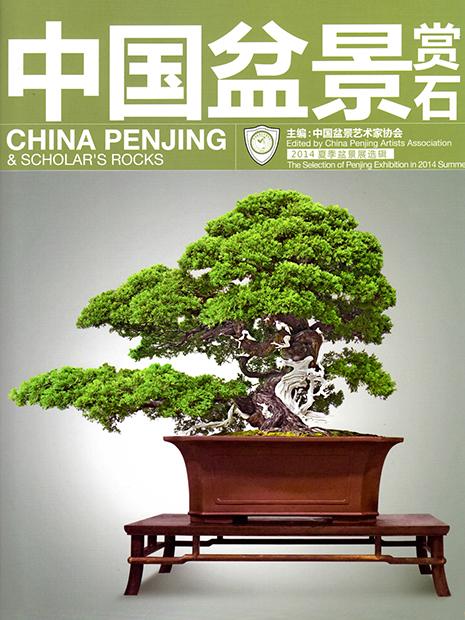 China Penjing